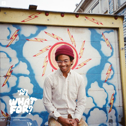 Toro y Moi (2015) What For?